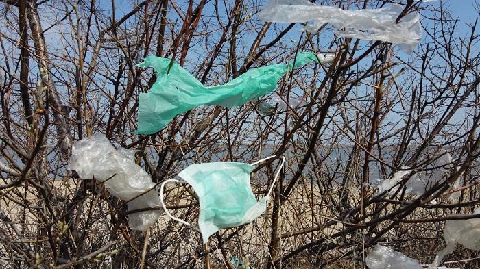 Plastikler ve Pandemi