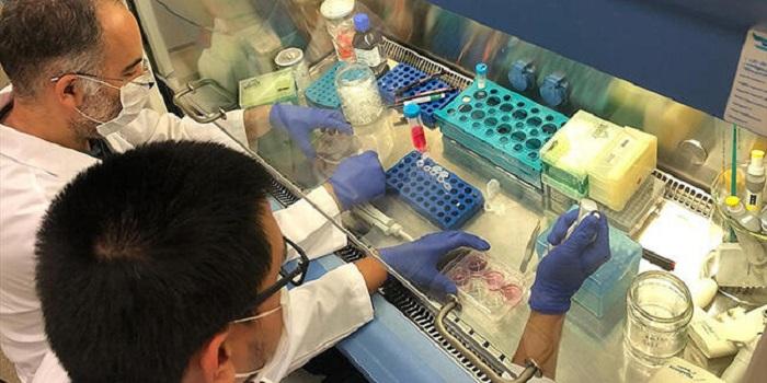 Türk Bilim İnsanları Kovid-19'a Karşı Yeni Nesil İlaç için Çalışıyor
