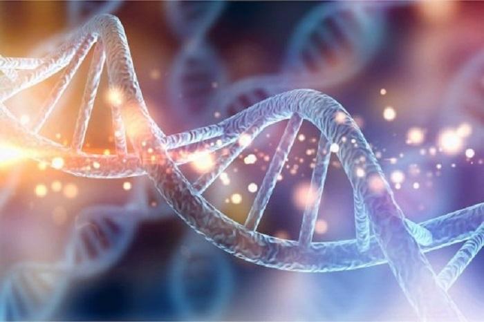İkizler Üzerinde Yapılan Çalışma, Duyarlılığımızın Kısmen Genlerimizde Bulunduğunu Gösteriyor