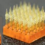 Mikro Dikenler İğne Yapılmayı Daha Az Acı Verici Hale Getirebilir