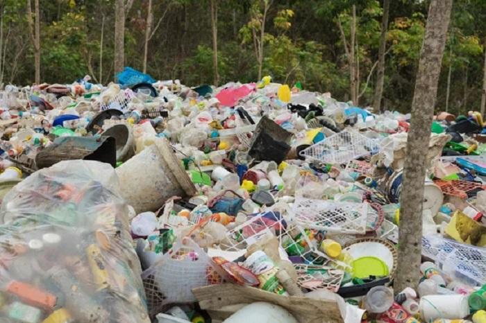 Bakteriler Çöp Depolama Sahalarında Kirlilik Yaratan Plastikleri Yiyor