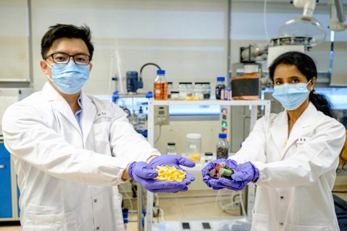 Bilim İnsanları Meyve Kabuklarını Kullanarak Eski Lityum İyon Pillerinden Yenilerini Üretti