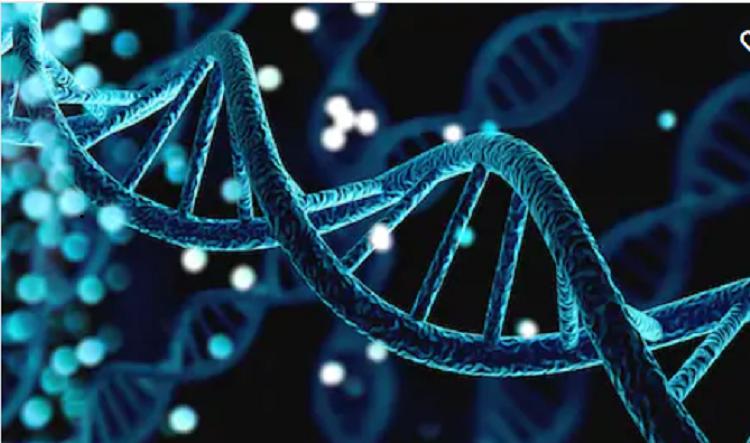 mRNA Başlangıç Kompleksinin Yapısı Kanser ve Diğer Hastalıkların İç Yüzünü Anlamamızı Sağlayabilir