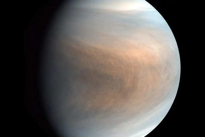 Venüsün Toksik Bulutlarındaki Hayat