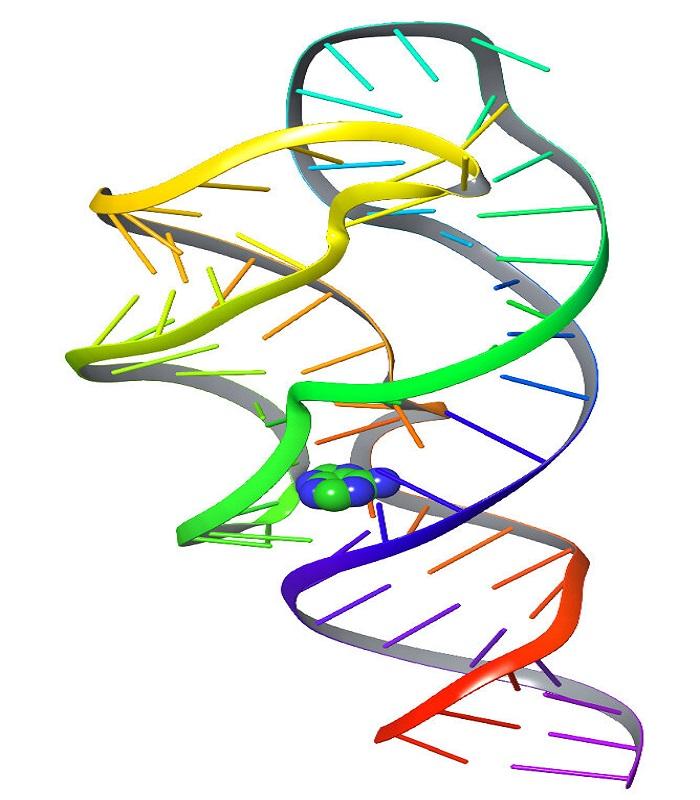 Moleküler Hareketleri Çözmek için Yapay Zeka Dil İşleme Araçları Kullanıldı