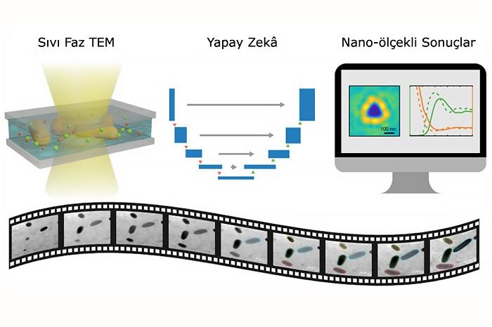 Yapay Zekâ ile Nano-Akvaryum