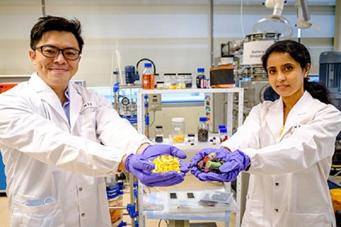 Bilim İnsanları Atık Pilleri Yenisine Dönüştürmek için Meyve Kabuğunu Kullanıyor