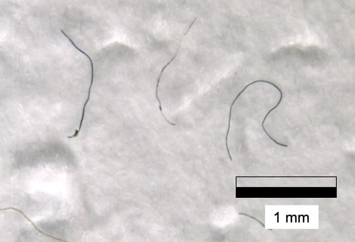 Bilim İnsanları, Everest Dağı'nın Zirvesinde Mikroplastiklere Rastladı
