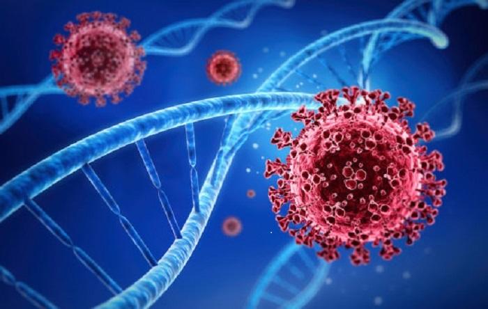"""Koronavirüse Evrimsel Bir Üstünlük Sağlayan """"Sessiz"""" Mutasyonların Tam Yerini Saptamak"""