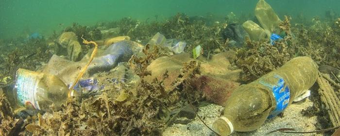 Robotik Denizaltı Kullanarak Okyanuslardaki Plastik Kirliliğini Gözler Önüne Serildi