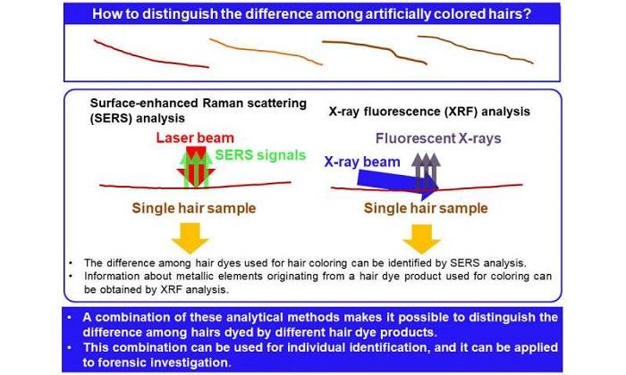 Bir Saç Teli Genişliği İçindeki Boyalı Saç Telinin Adli Olarak Tanımlanması Artık Mümkün!