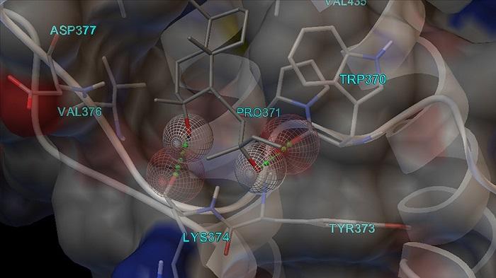 Türk Bilim İnsanlarından Koronavirüse Karşı 'Antiviral' Etkili Koku Molekülleri Tespiti