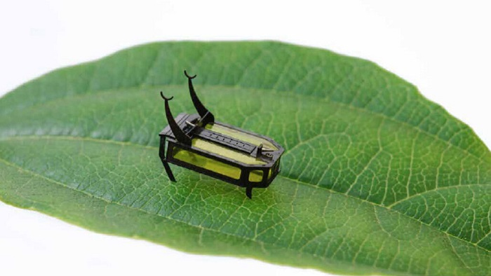 Metanol Yakıtı Bu Küçük Robot Böceğe (Roböcek) Dolaşma Özgürlüğü Veriyor