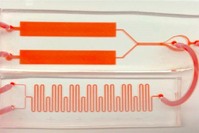 Stanford Araştırmacıları, Kan Testinin Anlık Görüntülerini Sürekli Filmlere Dönüştüren Bir Çip Üzerine Laboratuvar Kurdular