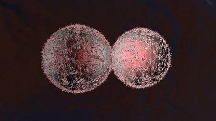Yalnızca Kanser Hücrelerinde Çözünen, İlaç ile Yüklenmiş Nanoparçacıklar Geliştirildi