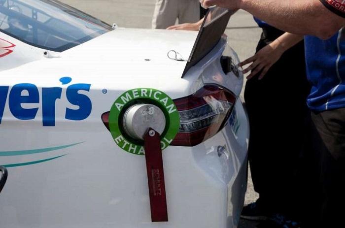 Bitkilerden Yakıt Üretimi için Daha Düşük Maliyetli Bir Yöntem Geliştiriliyor