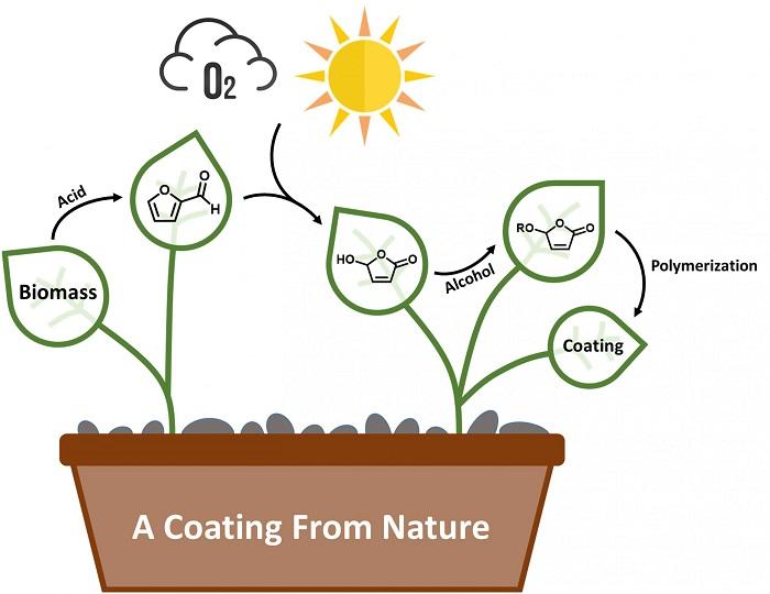 Geleceğin Yeşil Kimyasını Geliştirmek İçin Biyobazlı Sürdürülebilir Kaplamalar Oluşturuldu
