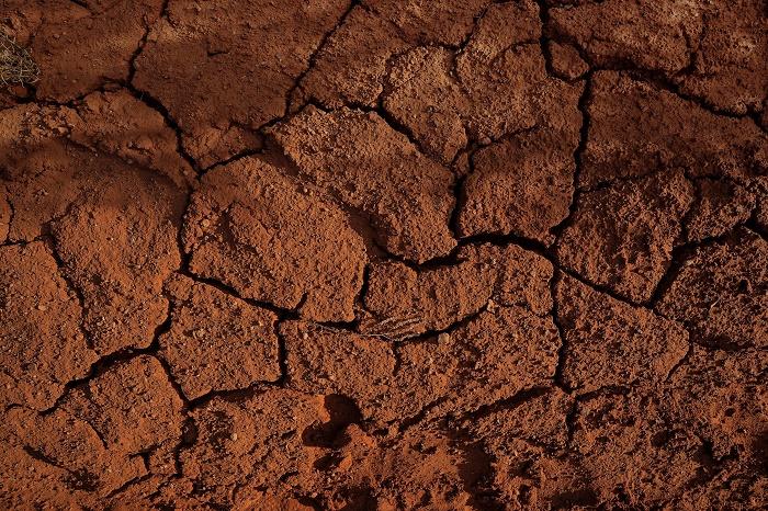 Kirlenmiş Topraktan Değerli Kimyasallar Sentezlendi