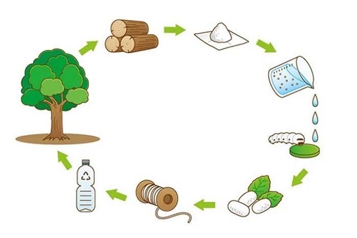 2 Kat Güçlü İpek Üretiminde Kullanılabilecek İpek Böceği Besini Geliştirildi