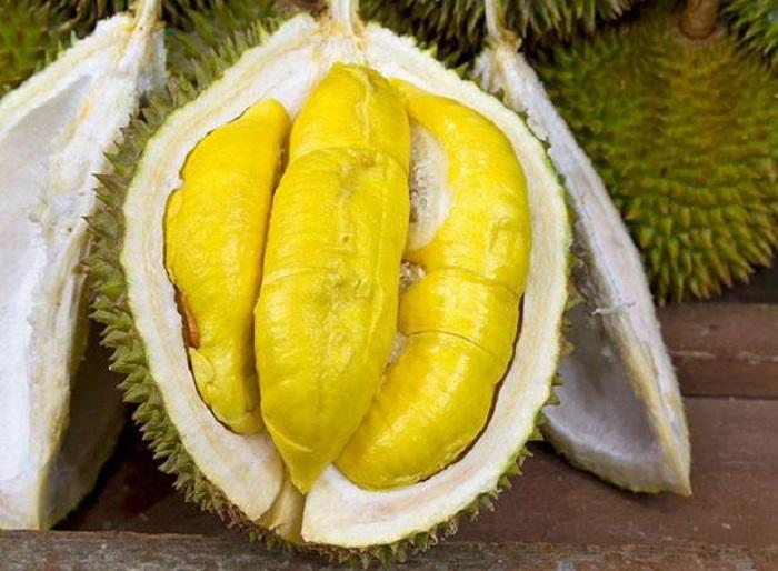 Bilim İnsanları Durian Kabuğunu Kullanarak Antibakteriyel Jel Bandajı Geliştirdi