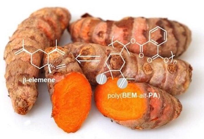 Biyo-Bazlı Polimerlerin Genişleyen Olanakları