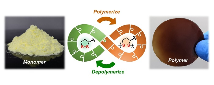 Bu Doğal Molekülle Tamamıyla Geri Dönüştürülebilen Polimerler Üretilebiliyor