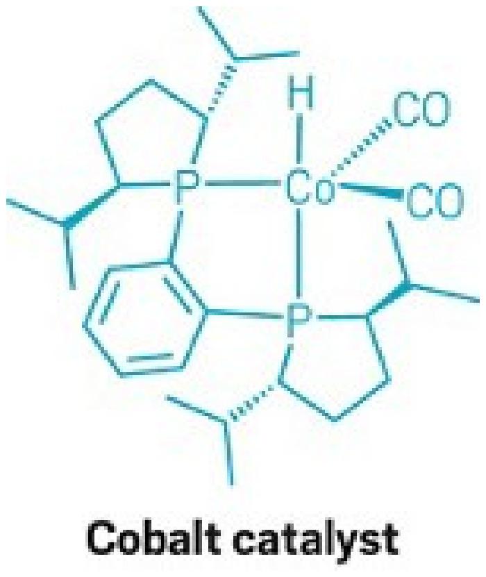 Katalizörler Nasıl Aktive Edildiklerine Göre Çalışıyorlar