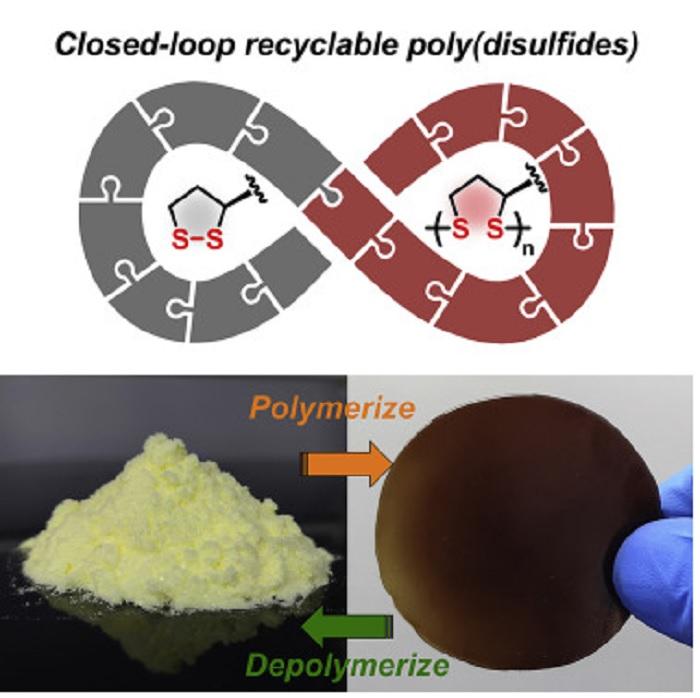 Lipoik Asit: Sevimli Küçük Monomerden Kolaylıkla Depolimerize Edilebilen Poli(disülfit) Polimeri Üretildi