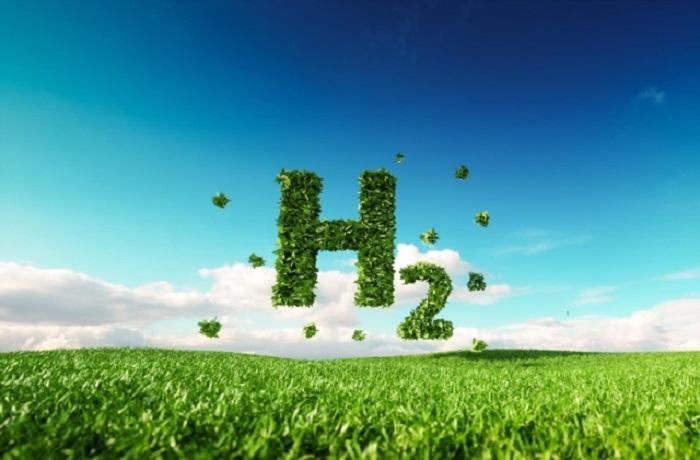 Temiz Hidrojen Üretiminde Platin Katalizörünün Yeni Rolü