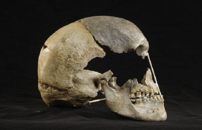 En Eski Modern İnsan Genomu: Neandertal