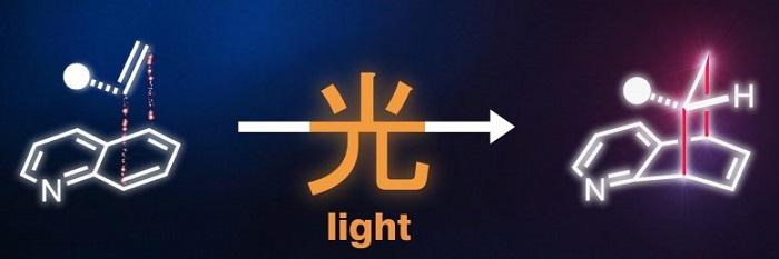 Kimyagerler, Üç Boyutlu Moleküler Yapıların Işık Aracılı Sentezinde Atılım Sağladılar