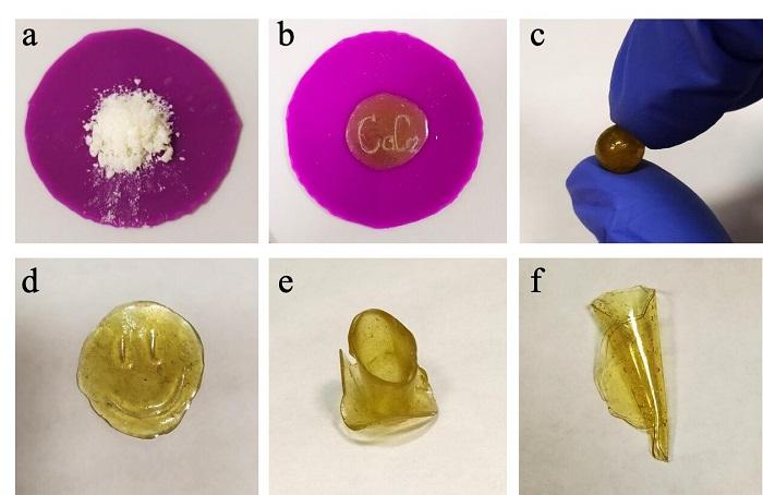 Kimyagerler Yenilenebilir Bitki Esaslı Polimerler Oluşturdu