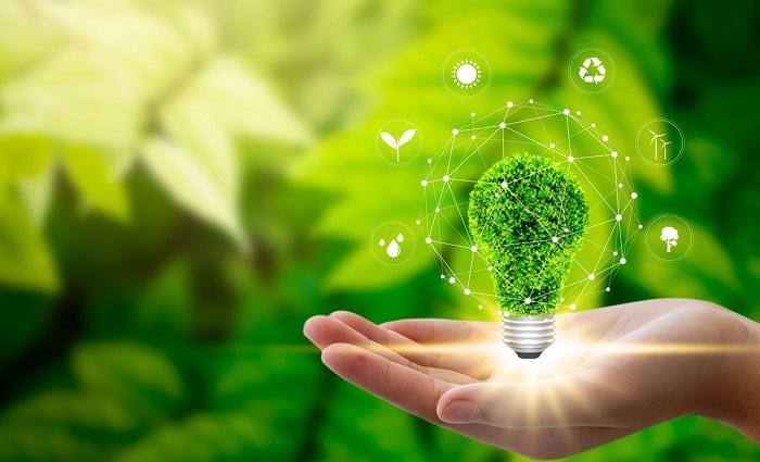 Yeşil Kimya ve Biyoyakıt: Deşifre Edilmiş Anahtar Bir Fotoenzimin İşleyiş Mekanizması