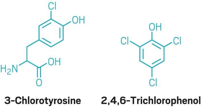 Adli Bilimler İçin Yeni Gelişme: Klor Gazına Maruz Kalmanın Biyobelirteçleri Bulundu