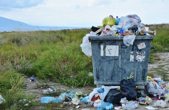Bakteriler Küresel Plastik Krizine Etkileyici Bir Çözüm Sunuyor