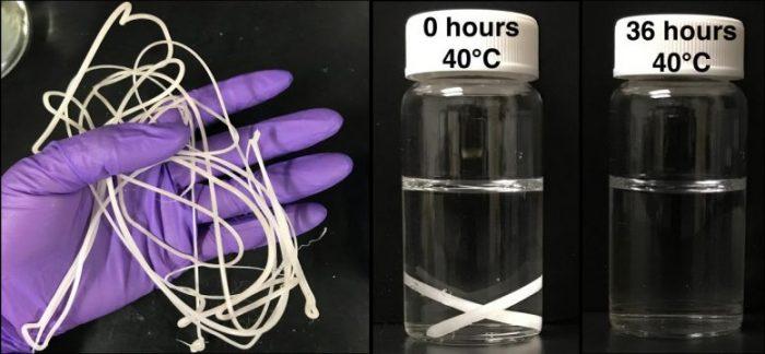 """""""Biyobozunur"""" Plastikleri Gübrelenebilir Hale Getiren Polimer Yiyen Enzimler"""