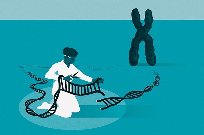 CRISPR Gen Düzenlemesini Daha Hassas Hale Getiren Algoritma