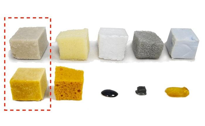 Peynir Altı Suyu Proteinlerinden Geliştirilen Yeni Plastik Köpük Zorlu Koşullara Dayanabiliyor