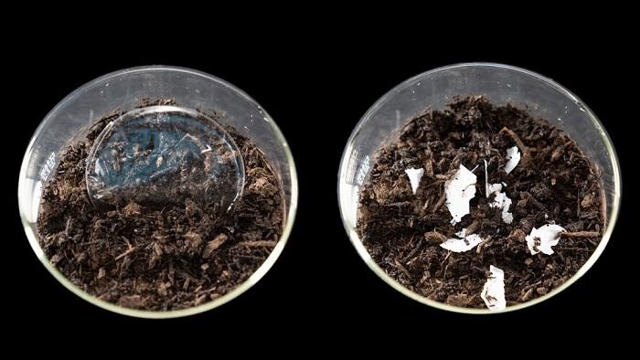 Plastik Çöpleri Kompost Haline Getirmek için Yeni Bir Teknik