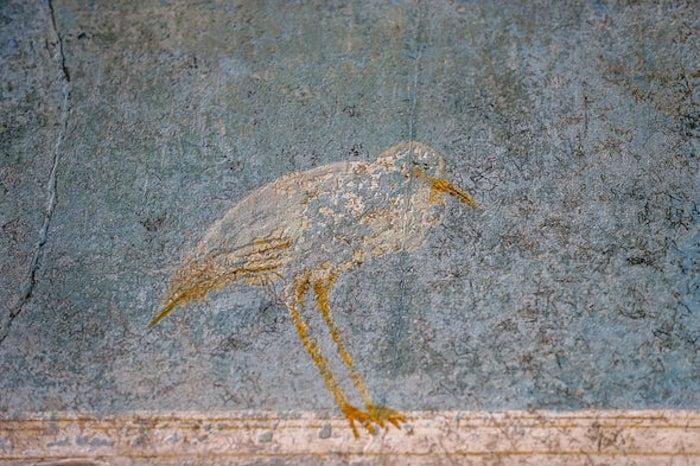 Volkanik Kül Pompeii'nin Gömülü Duvar Resimlerini Tehdit Ediyor