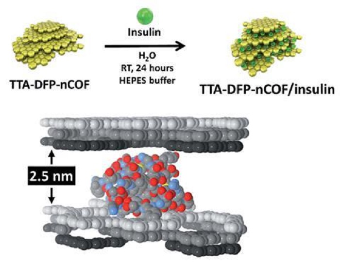İnsülin Taşıyan Yutulabilir Bir Kovalent Organik Çerçeve (COF) Geliştirildi!