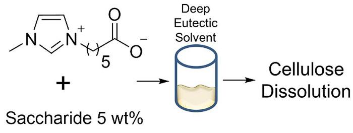 Biyoetanol için Bitki Selülozunu Parçalayacak Yeni Çözücüler