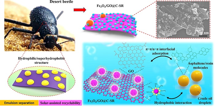 Su-Yağ Emülsiyonu Ayırma Performansı Mükemmel Geliştirilmiş, Çöl Böceğinden İlham Alan Manyetik Emülsiyon Çözücü