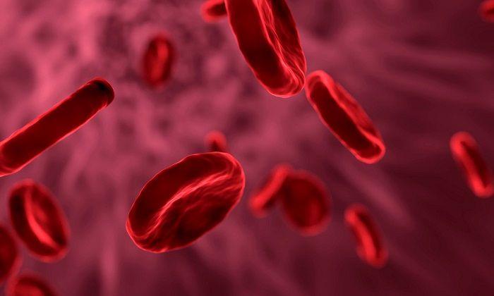 Araştırmacılar, Kan Örneklerinde Kafein ve Başka Bileşiklere Rastladı