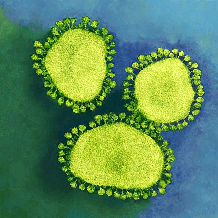 Çin Koronavirüsü: Dünya Genelinde Laboratuvarlar, Canlı Virüs Örneklerini Analiz Etmek İçin Dünya Çapında Paylaşımda Bulunuyor