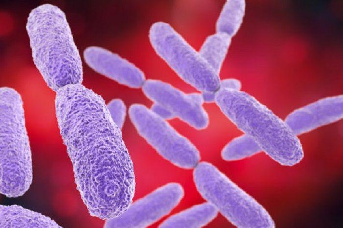 Moleküler Matkaplar Tarafından Yok Edilen Ölümcül 'Antibiyotiklere Dirençli Bakteriler'